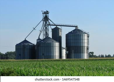 A shot of Grain Bins in a field with green Corn and a blue sky. That's bright and colorful south of Lyons Kansas USA out in the country. On 7-27-2019.