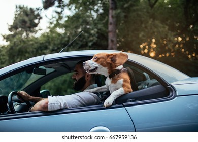 Shot of a handsome young man riding with a dog in the car.