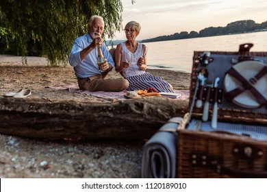 Shot of a happy senior couple having a picnic and drinking champagne at the riverbank