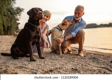 Shot of a happy senior couple playing with their dogs by the river.