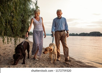 Shot of a happy senior couple with their dogs walking by the river