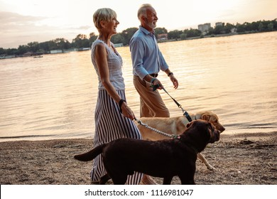 Shot of a happy senior couple walking their dogs by the river.