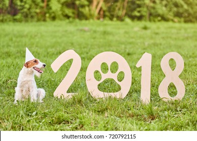 Shot of a happy young fox terrier puppy wearing party hat sitting next to 2018 wooden sing new year celebration festive greeting card nature outdoors concept.