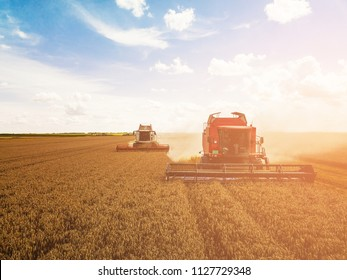 Shot of the harvesters working in the field