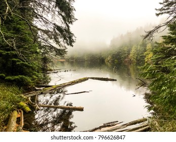 Shot of a lake on orcas island. The lake was inside Moran state park. Shot was taken while standing on a wooden bridge