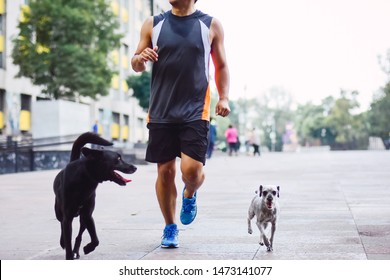 shot of a man working out in a park accompanied by his pretty puppies
