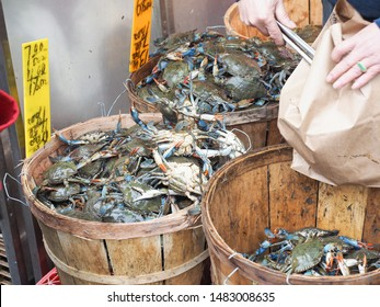 A shot in market in New York of buckets of fresh blue crabs and buyer is selecting and put them in brown paper bag