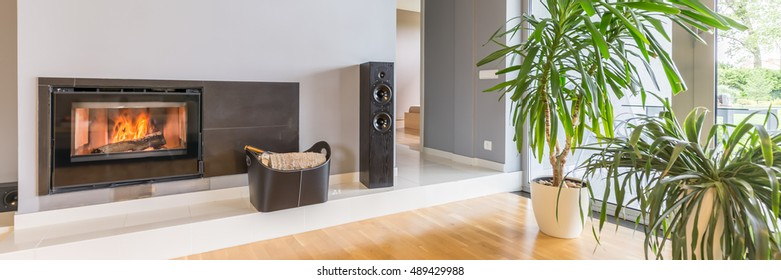 Shot of a modern living room with a fireplace and flowers