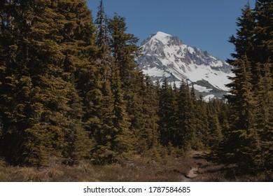 Shot of Mount Hood in Oregon taken at McNeil Point