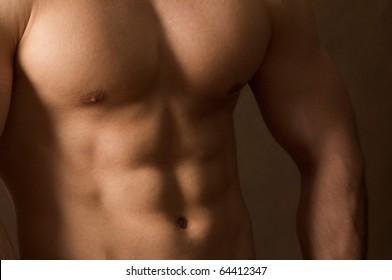 shot of muscular body