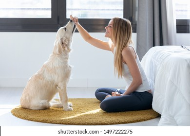 Shot of pretty young woman feeding her dog while having fun at home.