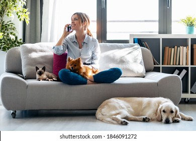 Shot of pretty young woman talking with mobile phone while sitting in couch with her dogs and cat at home.