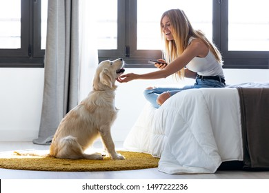 Shot of pretty young woman using her mobile phone while staying with her dog at home.