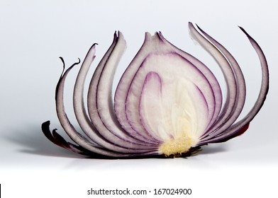 A shot of the slice of red onion.