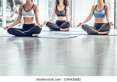 Shot of three young women doing yoga in the class. Fitness people sitting on the exercise mat and relaxing in yoga position. Group of female meditating in lotus pose in yoga class