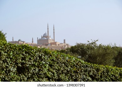Shot of the trees and Cairo citadel in the background. Citadel of Saladin is one of the greatest monuments in Egypt.