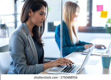 Shot of two business women work with laptops on the partitioned desk in the coworking space. Concept of social distancing.