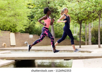 Shot of two sporty young women running together in the park.