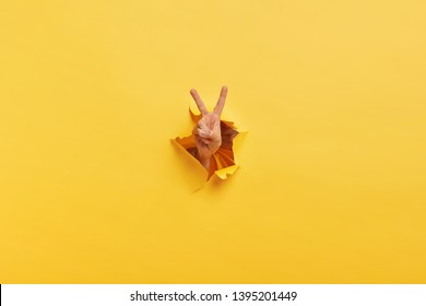 Shot of unrecognizable man demonstrates victroy sign through torn hole in yellow paper, expresses celebration and triumph. Unusual concept. Copy space. Breaking through paper wall. Body language