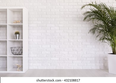 Shot of a white modern room with a plant and a bookcase