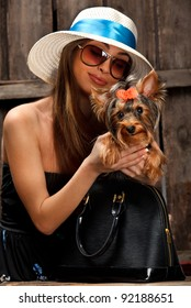 Shot of Yorkshire Terrier dog in bag and young glamor woman over wooden background