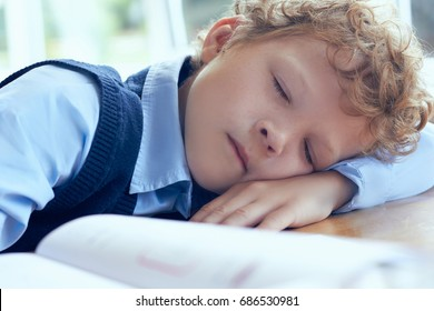 Shot of a young boy sleeping during the lesson at elementary school.