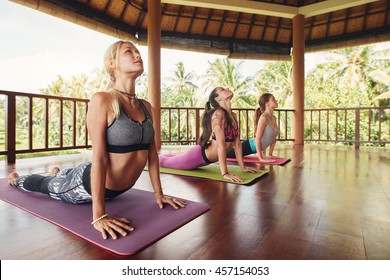 Shot of young women doing cobra pose on exercise mat at yoga class. Three female doing core stretch on fitness mat.
