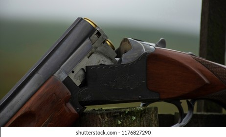 Shotgun open with cartridges