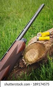 Shotgun and shells resting against a log