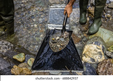 a shovel full gravel to feed the sluice box, gold panning with a sluice box,
