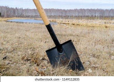 a shovel is inserted into the ground at an angle, the background of the field and the marsh trees without leaves is wounding the spring