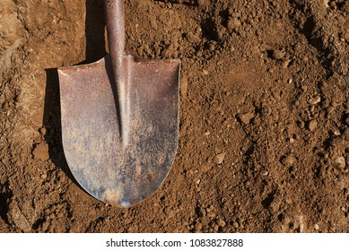 Shovel on soil backgound.Gardening.