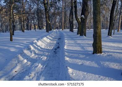 Shovel recently wintertime walk in park, Sofia, Bulgaria