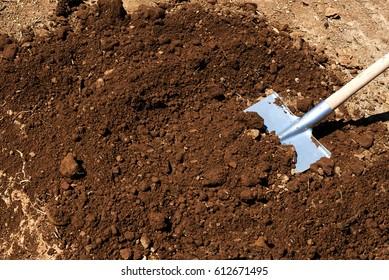 Shovel thrown soil for tree planting.