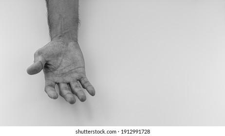 後ろ楯 High Res Stock Images   Shutterstock
