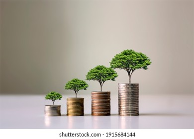 Showing financial developments and business growth with a growing tree on a coin.