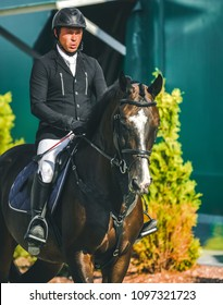 Showjumping competition, bay horse and rider in black uniform going performing jump. Equestrian sport background. Beautiful horse portrait during show jumping competition.