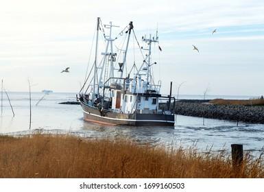 Shrimp boat on river Weser in Wremen near Cuxhaven in Germany