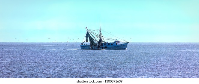 A Shrimp Boat on Sunny Sea surrounded by birds