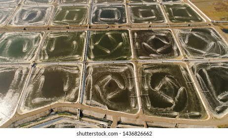 shrimp farm, prawn farming with with aerator pump oxygenation water near ocean. aerial view fish farm with ponds growing fish and shrimp and other seafood. Fish hatchery pond aerial view aquaculture