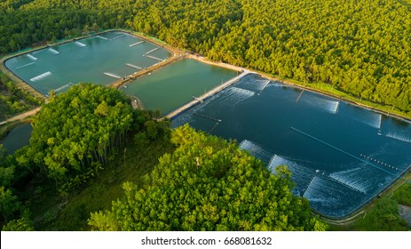 Shrimp farms aerial view in the Phang Nga bay area, Thailand