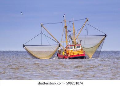 Shrimp fishing cutter vessel in the Dutch wadden sea