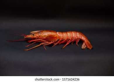 Shrimp on dark background. Fresh shrimp.