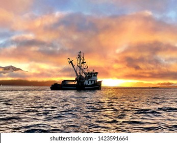 Shrimp trawler near Petersburg Alaska