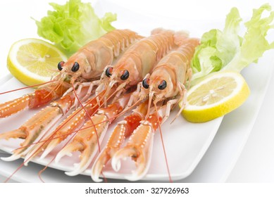 shrimp in a white isolated background