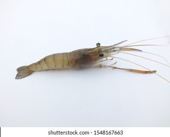 Shrimp,freshwater prawn,(Macrobrachium rosenbergii,dacqueti ) on white background.