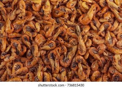 Shrimps background texture. Sea shrimp or pattern of krill.
