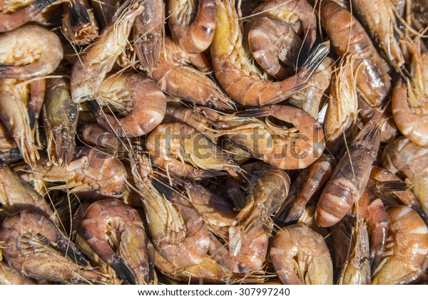 shrimps close up - food background