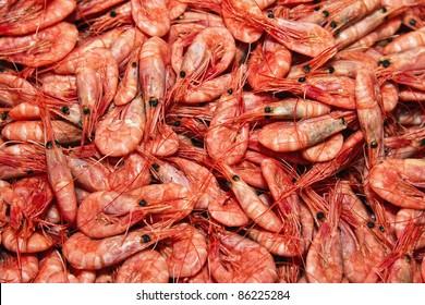 Shrimps. The fish market. Bergen. Norway.
