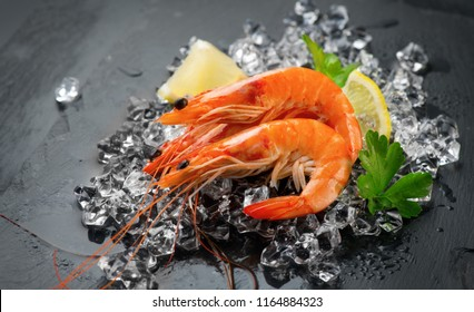 Shrimps. Fresh Prawns on a Black Background. Seafood on crashed ice served with herbs, dark background, Served food, preparing healthy food, cooking, diet, nutrition concept